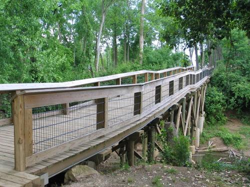 Wooden walkway!